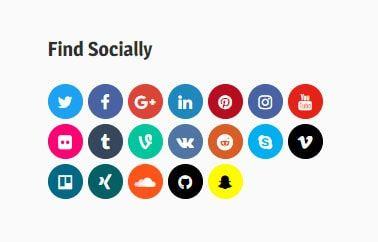 Social Icon widget
